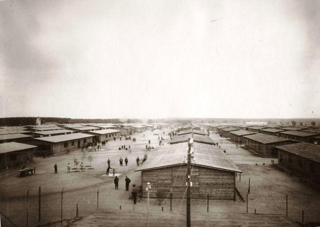 Il campo di Celle